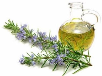 Полезные свойства и рецепты применения масла розмарина в косметологии