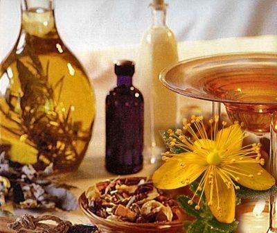 Целебное растение Зверобой и его масло