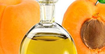 Абрикосовое масло из зёрен плода