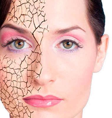 Результат от использования абрикосового масла для сухой кожи лица