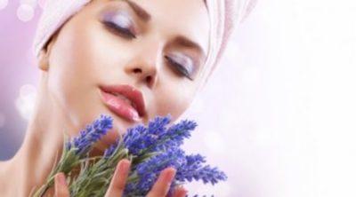 Прекрасные свойства и рецепты применения масла лаванды для лица