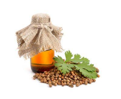 Чудодейственное масло кориандра и способы его применения