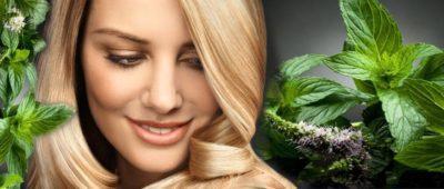 Как использовать масло мяты для волос?